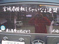 P40500681